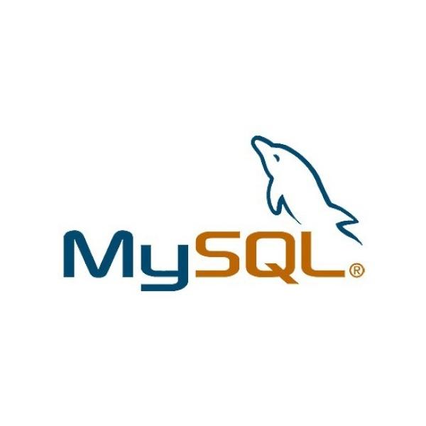MySQL Standard Edition [1년사용/라이선스/1-4 socket server]