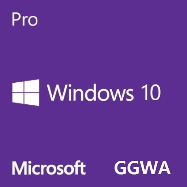[FQC-09478] Windows 10 Pro GGWA [기업용/라이선스/5개이상 구매가능] [기업용(일반기업,모텔 등)]