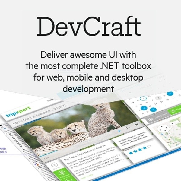 DevCraft Complete Developer License with Priority Support [기업용/영구/라이선스]