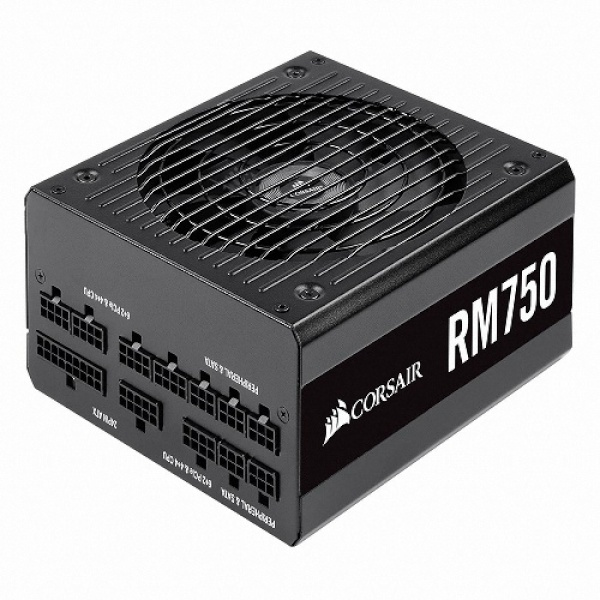 RM750 NEW 80PLUS GOLD (ATX/750W)
