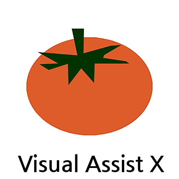 Visual Assist X Standard [기업용/ESD/영문]