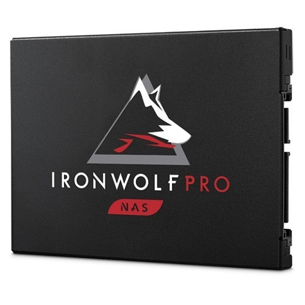 IRONWOLF PRO 125 SSD 960GB TLC
