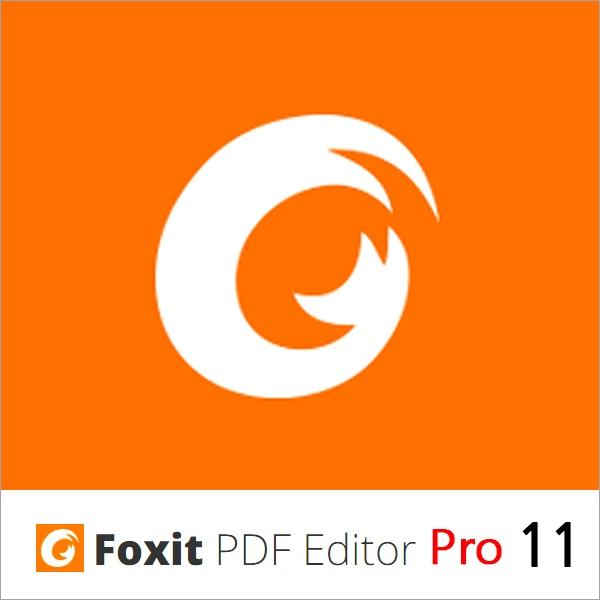 Foxit PDF Editor Pro 11 (팍스잇 PDF 에디터 프로 11) [상업용/한글/ESD(이메일발송)]